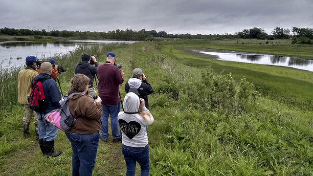 Wetland Wednesday Field Trip