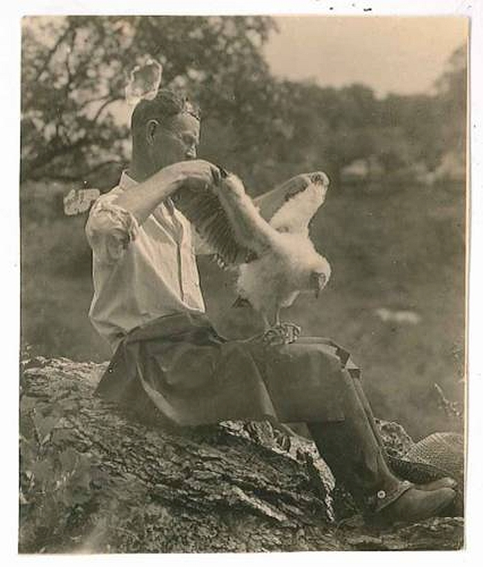 Burroughs Audubon Society of Greater Kansas City - The